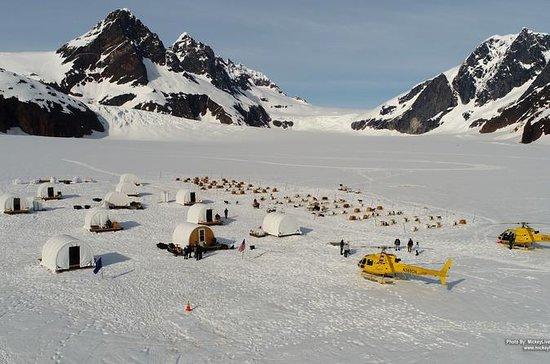 Escursioni a bordo di Juneau
