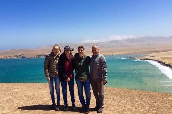 Ballestas Islands og Paracas reserver...