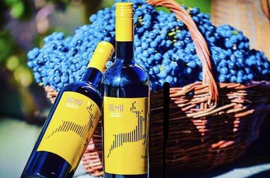 Moldavia tu próximo destino de vino