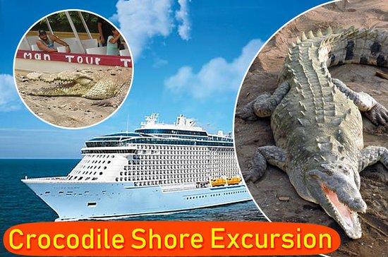 Escursioni a Crocodile Economico e