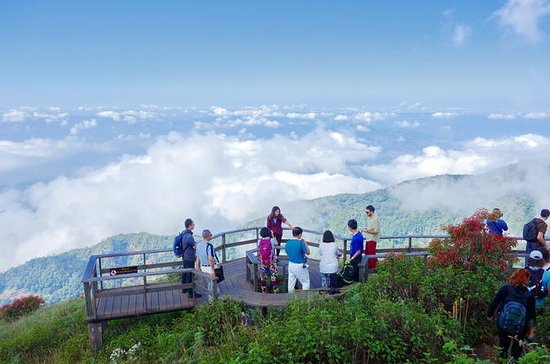 Doi Inthanon National Park Full Day...