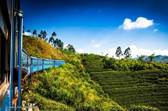 Tour di 4 giorni a Kandy, Sigiriya e