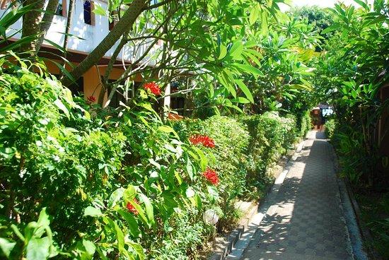 Krua Aonang Cuisine: Aonang Beach Home .