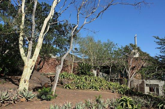 Bilde fra Phinda Private Game Reserve