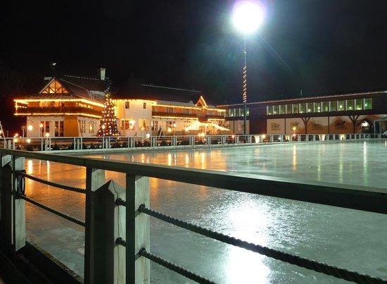 Foto Otradnoye