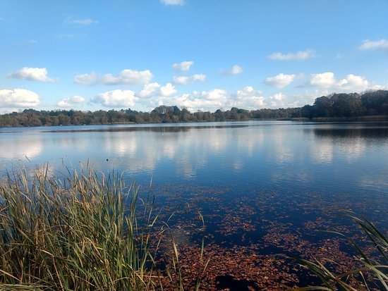 Lurgan lake