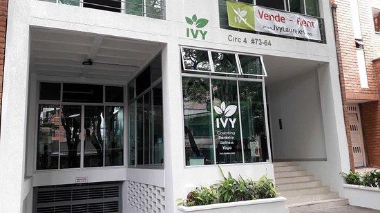 Ivy laureles Coworking & Wellness