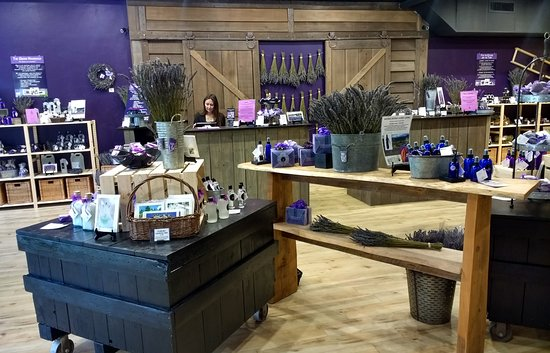 Pelindaba Lavender Sarasota
