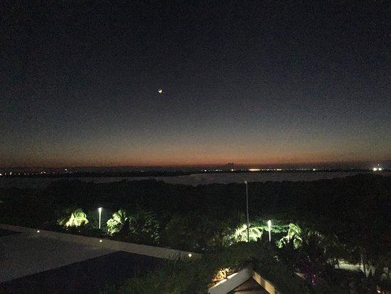 Sakura Sunset Photo