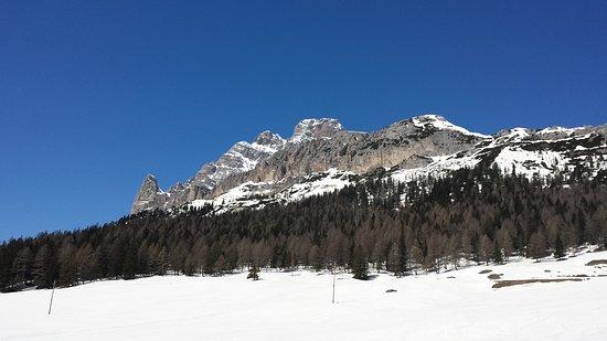 Belluno Dolomites Foto