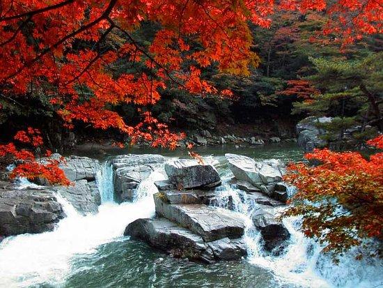 Okutsu Valley