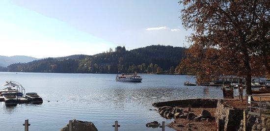 Foto de Lake Titisee