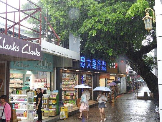 Shenzhen Zhongying Street