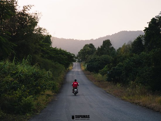 Chanthaburi Province, Tailandia: Perfect road for riding a scooter