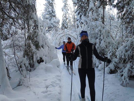 National Forest Lodge: 30k of groomed wilderness trails
