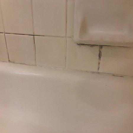 ZERO STARS: roaches and dirty, no maintenance