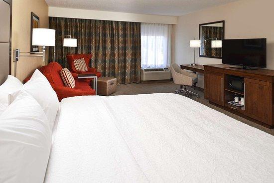 Carbondale, IL: Guest room