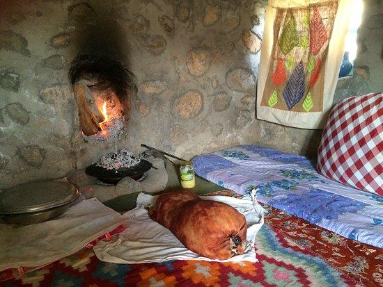 Bam, Iran: some contributions in Asiakade ecotourism hotel