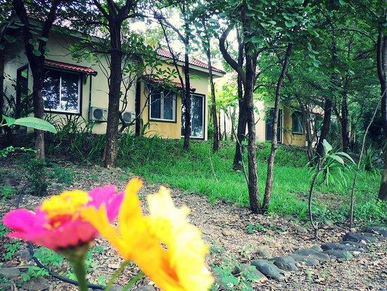 Pailin Foto