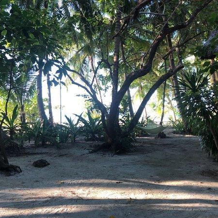 Pandan Island Foto