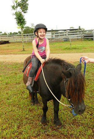 Tully, Australia: Saxby the pony
