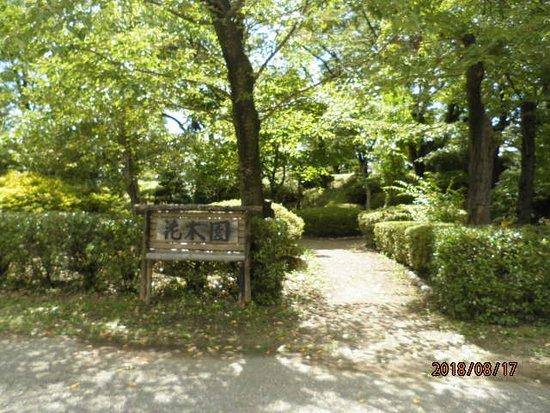 Ueda Joseki Park