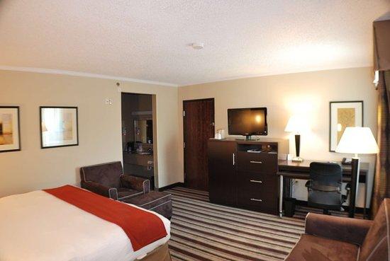 Holiday Inn Express Nashville W-I40 / Whitebridge Road: Guest room