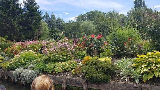 Les Hortillonnages d'Amiens Photo