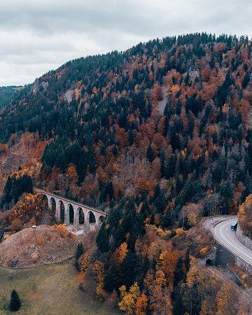 Black Forest, ألمانيا: La forêt noire en automne