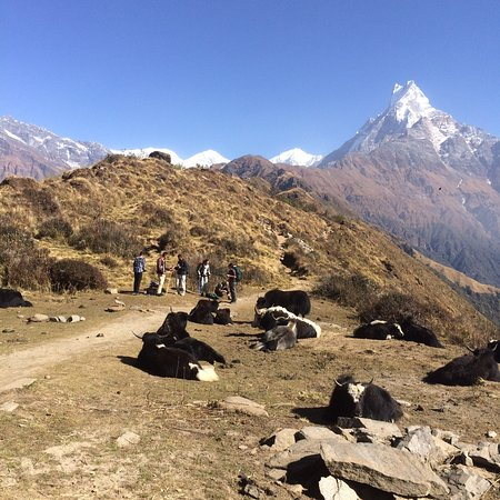 Exciting Nepal Treks And Expedition Kathmandu 2019 All
