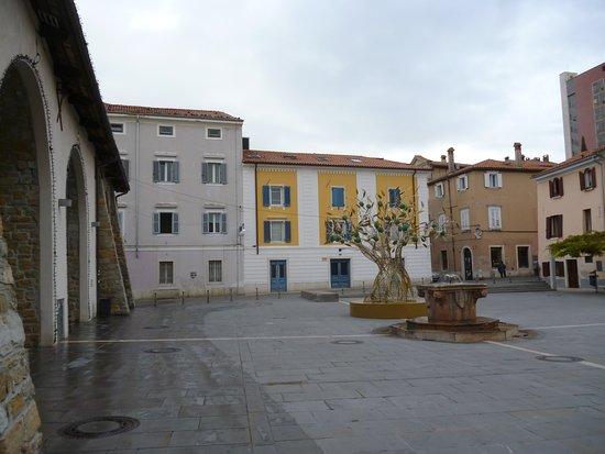 Копер, Словения: Carpaccio Square with christmas decoration