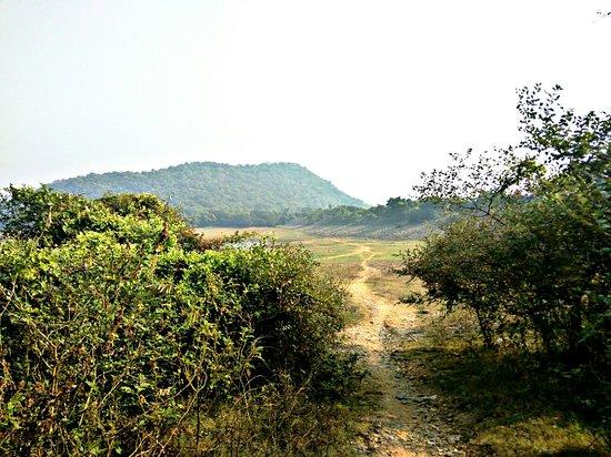 Bilde fra Bardhaman District