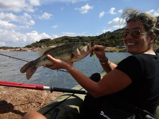 Lago Coghinas : Pesca al Black Bass