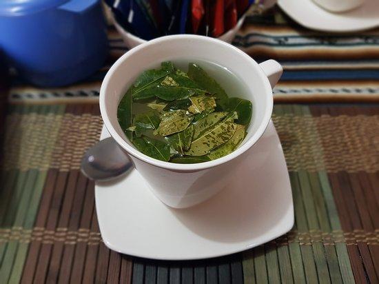 Cariquima, Chile: coca 'tea'