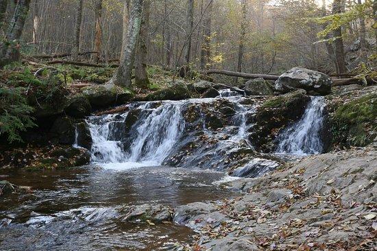 White Oak Canyon Trail: stream
