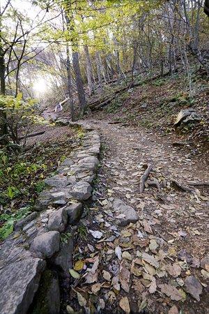 White Oak Canyon Trail:  the easy part