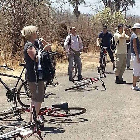 Lower Zambezi National Park, Sambia: Biking trails