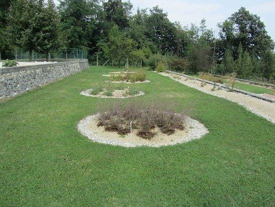 """Giardino Vegetazionale """"Astego"""""""