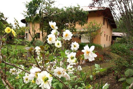 Bilde fra Leymebamba