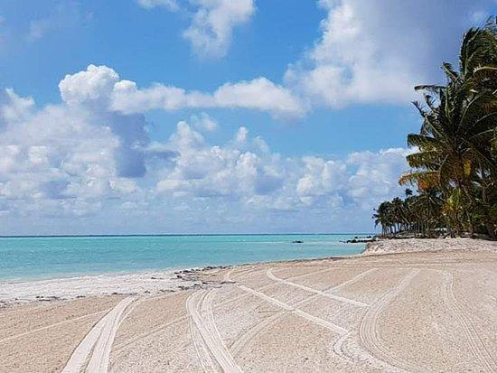 Playa Limon, Dominikanische Republik: playa el Cortecito