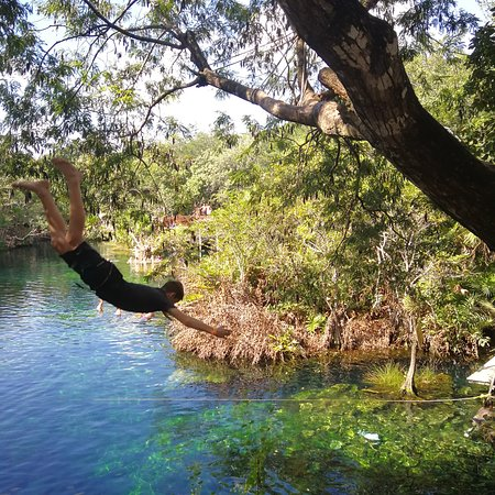 Фотография Cenote Jardín del Eden