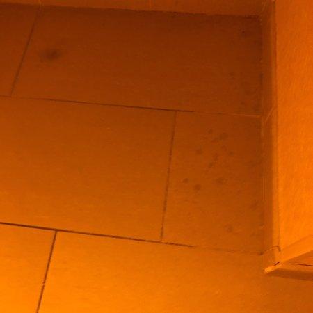 ラディソン ホテル ナシュア Picture