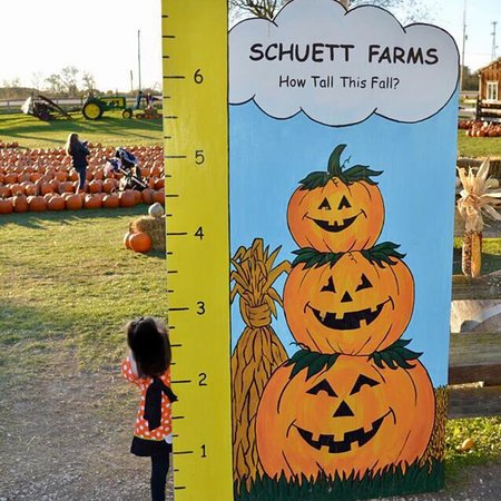 Schuett Farms