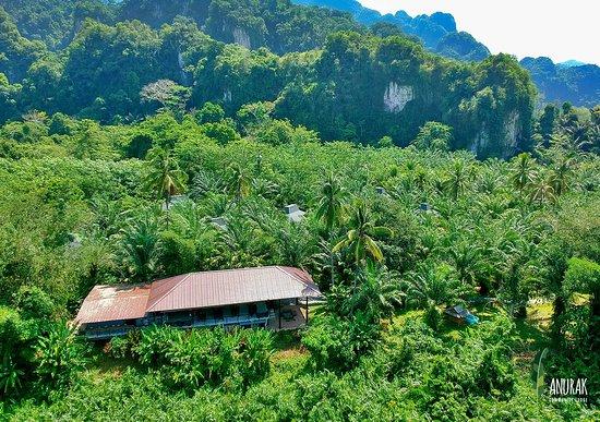 Pictures of Anurak Community Lodge - Khlong Sok Photos - Tripadvisor