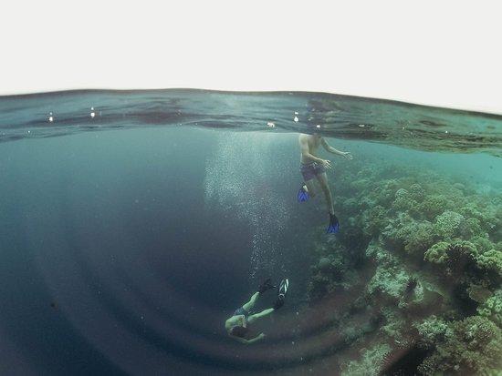 Zdjęcie South Sulawesi