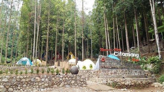 View Perkemahan Picture Of Wonderful Citamiang Cisarua Tripadvisor