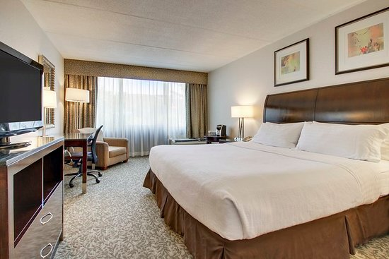 Carle Place, NY: Guest room