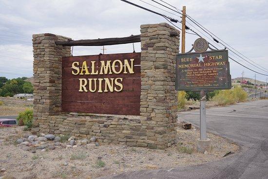 Salmon Ruins Foto