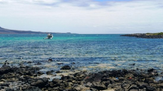 Wreck Bay Diving Center: discovery dive