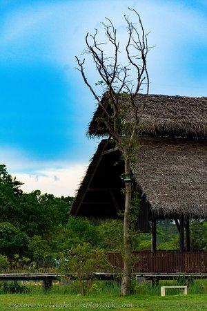 Foto Sri Jayawardenepura